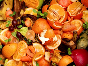 Photo of food scraps